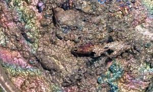 Bismuth melting.